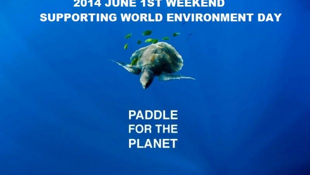 Paddle for the planet turtle